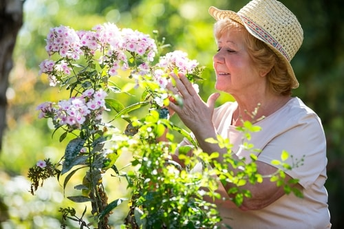 Memory Care: Olfactory-evoked Recall - the Connection Between Scent and Memory